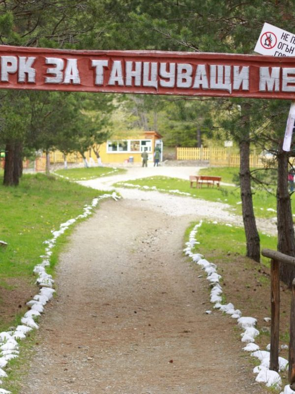 Парк за танцуващи мечки