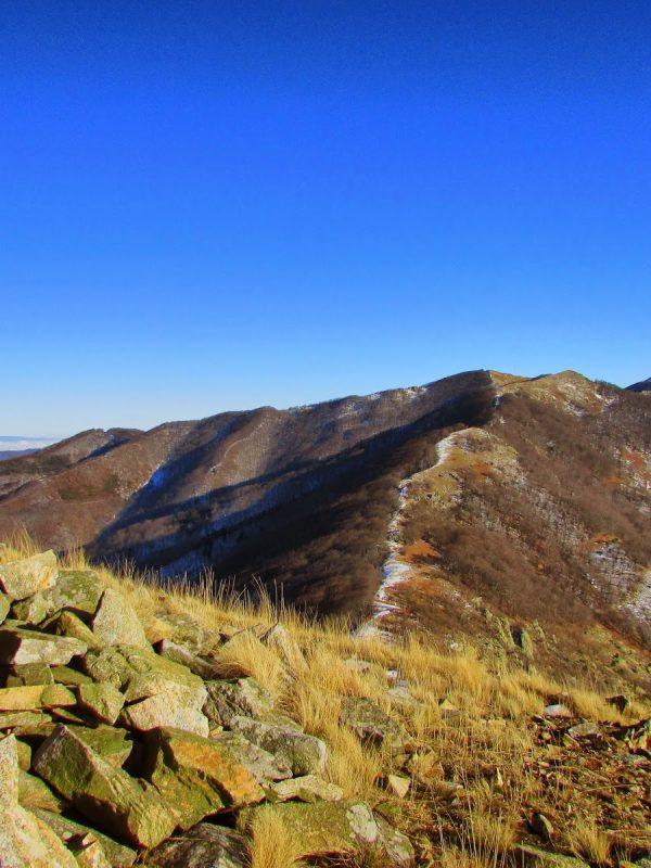 връх Вейката